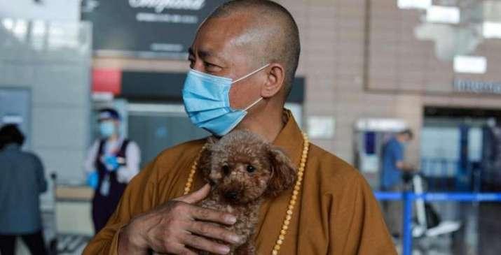 Állatmentő sanghaji szerzetes
